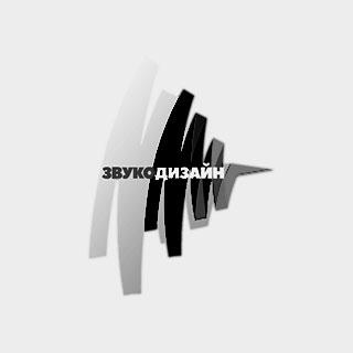 Инсталляционная компания «Звукодизайн»
